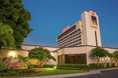 Hilton Hotel Airport Tampa