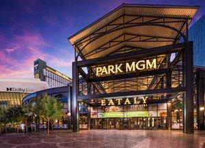 Mgm Monte Carlo Resort Las Vegas